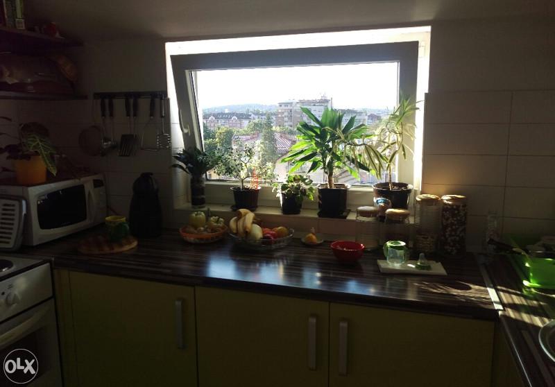 Kuhinja sa prozorom i elementima